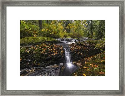 Autumn Euphoria  Framed Print by Mark Kiver
