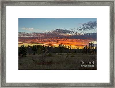 Autumn Evening Framed Print