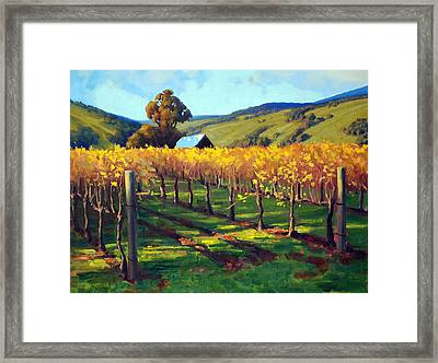 Autumn Evening Napa Framed Print