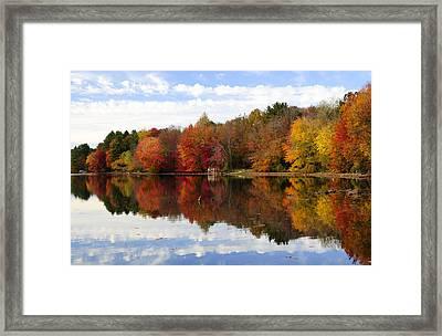 Autumn Explosion Framed Print by Luke Moore