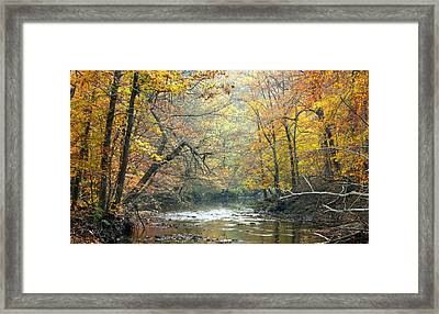 Autumn Fairmount Park Philadelphia Pennsylvania Framed Print
