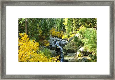 Autumn Fall Framed Print