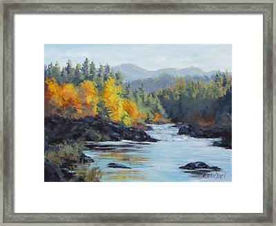 Autumn Falls Framed Print by Karen Ilari