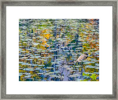 Autumn Fanaticism Framed Print by Optical Playground By MP Ray
