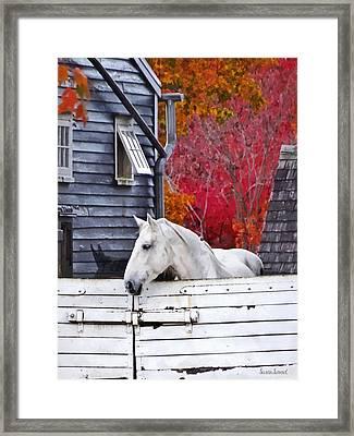Autumn Farm With White Horse Framed Print