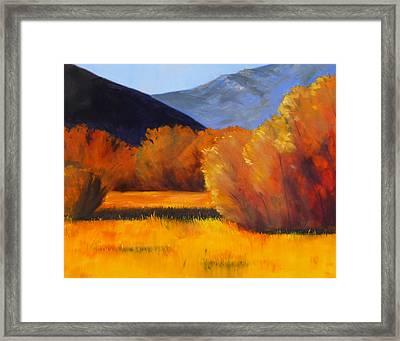 Autumn Field Framed Print by Nancy Merkle