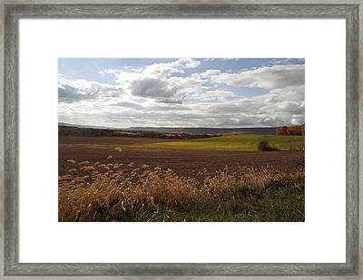 Autumn Fields Framed Print by Elsa Marie Santoro