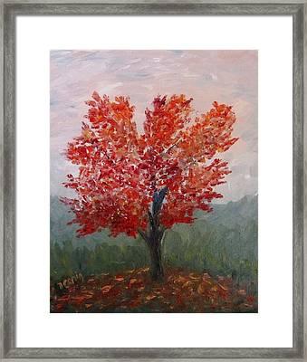 Autumn Fire Framed Print by Nancy Craig