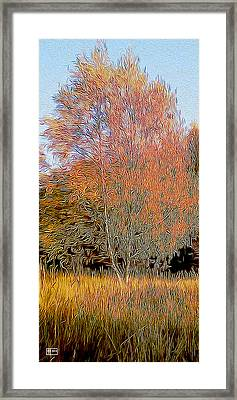 Autumn Fires Framed Print by Jim Pavelle