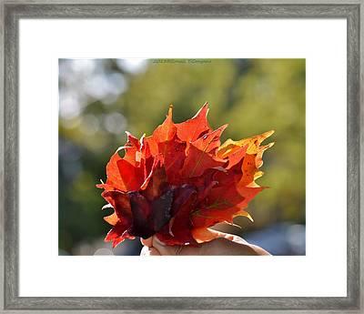 Autumn Flower Framed Print