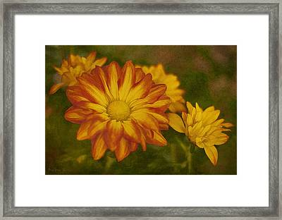 Autumn Flowers Framed Print by Ivelina G
