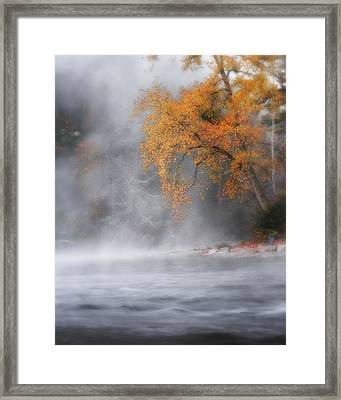 Autumn Fog Framed Print by Bill Wakeley
