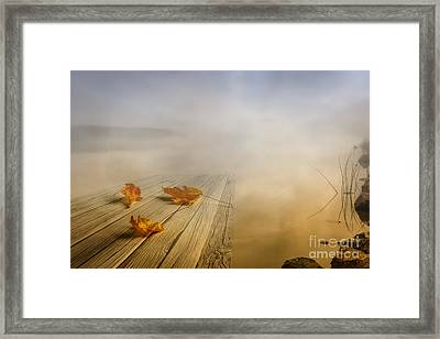 Autumn Fog Framed Print by Veikko Suikkanen