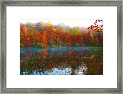 Autumn Foliage Framed Print by Lanjee Chee
