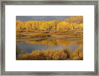 Autumn Foliage Surrounds A Pool In The Framed Print by David Ponton