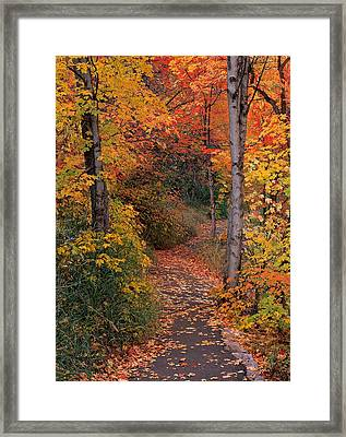 Autumn Foot Path Framed Print by Leland D Howard