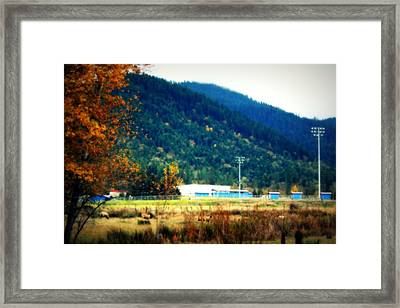 Autumn Football Nights Framed Print by Melanie Lankford Photography