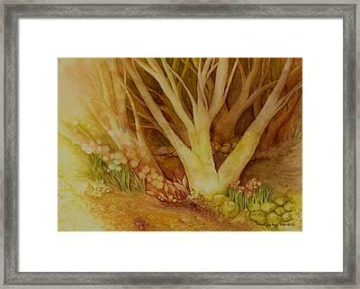 Autumn Forest Framed Print by Hailey E Herrera