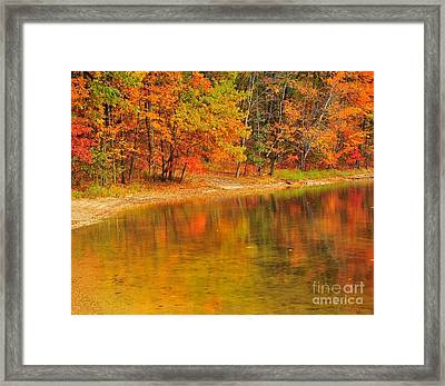 Autumn Forest Reflection Framed Print by Terri Gostola