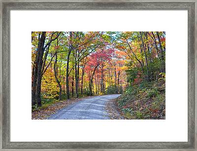 Autumn Forest Trail Framed Print by Bob Jackson