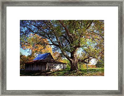 Autumn Friends Framed Print by Reid Callaway