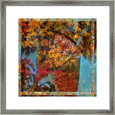 Autumn Fusion 5 Framed Print by Jeff Breiman