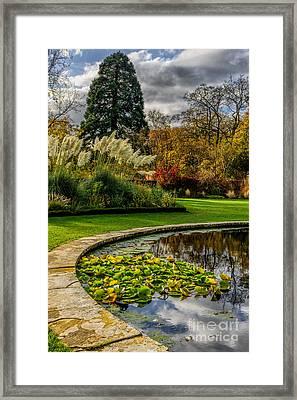 Autumn Garden Framed Print