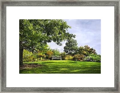 Autumn Garden Framed Print by Christina Rollo