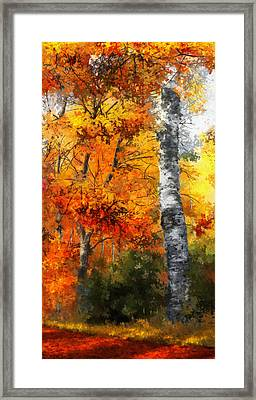 Autumn Glory II Framed Print by Dale Jackson