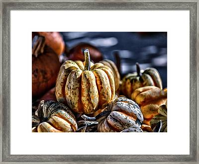 Autumn Glow Framed Print by Caitlyn  Grasso