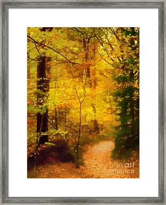 Autumn Glow Framed Print by Lutz Baar