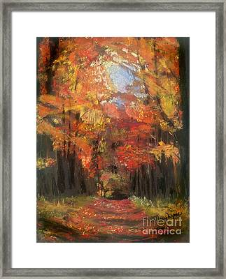 Autumn Glow Framed Print by Mary Lynne Powers