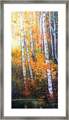 Autumn Glow Framed Print by Patti Gordon