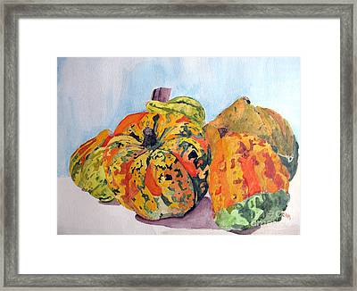 Autumn Gourds Framed Print