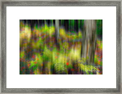 Autumn Grace - A Tranquil Moments Landscape Framed Print by Dan Carmichael