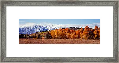 Autumn Grand Teton National Park Wy Framed Print by Panoramic Images