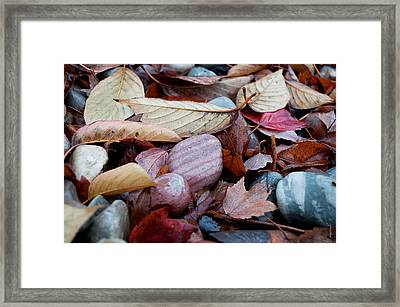 Framed Print featuring the photograph Autumn Greatness by Gwyn Newcombe