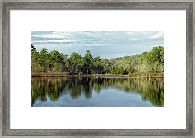 Framed Print featuring the photograph Autumn Green Photo Art by Constantine Gregory