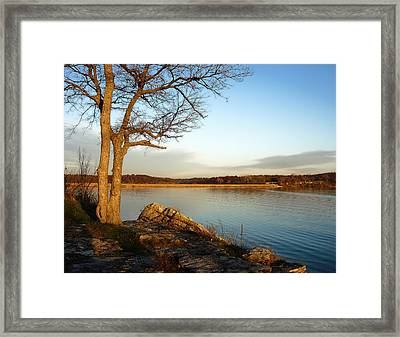 Autumn Guardian Of The Lake Framed Print by Ellen Tully