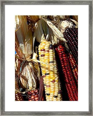 Autumn Harvest Framed Print by Julie Palencia