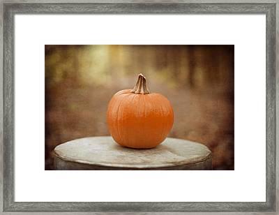 Autumn Harvest Framed Print by Kim Fearheiley