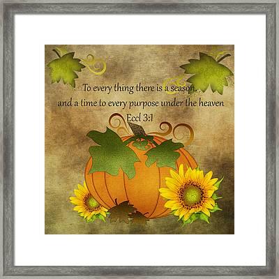 Autumn Harvest Pumpkin Framed Print
