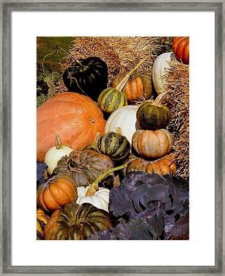 Autumn Harvest Framed Print by Rosanne Jordan