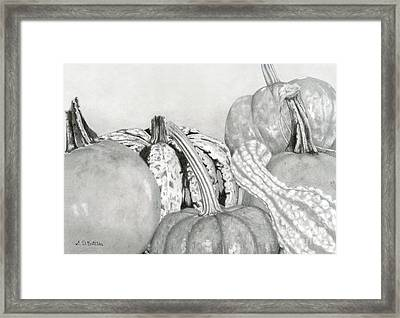 Autumn Harvest Framed Print by Sarah Batalka