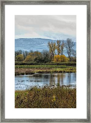 Framed Print featuring the photograph Autumn Haven by Belinda Greb