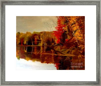 Fall Trees Reflected On Lake Framed Print by Lisa Alex Gray