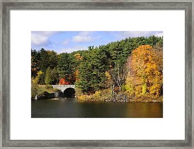 Autumn Hillside Framed Print by Luke Moore