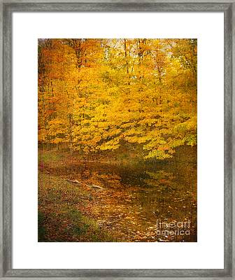 Framed Print featuring the photograph Autumn Impressions by Kathi Mirto
