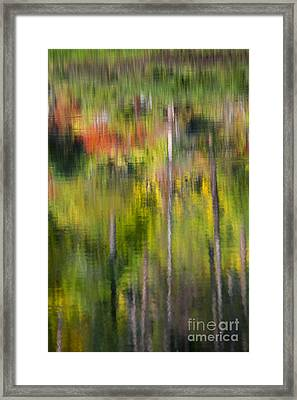 Autumn Impressions Framed Print by Mike  Dawson