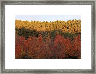 Autumn In Arcadia Framed Print
